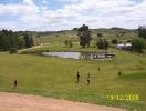 Minas 2008_1