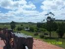 Minas 2008_2
